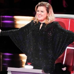 The Voice 2013: Best Performance From the Season 4 Blind Auditions, April 9, 2013 (VIDEO)